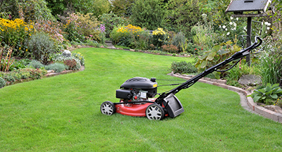mowing Hassle Free Lawn Maintenance in Albuquerque, New Mexico